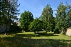 DSC_0350